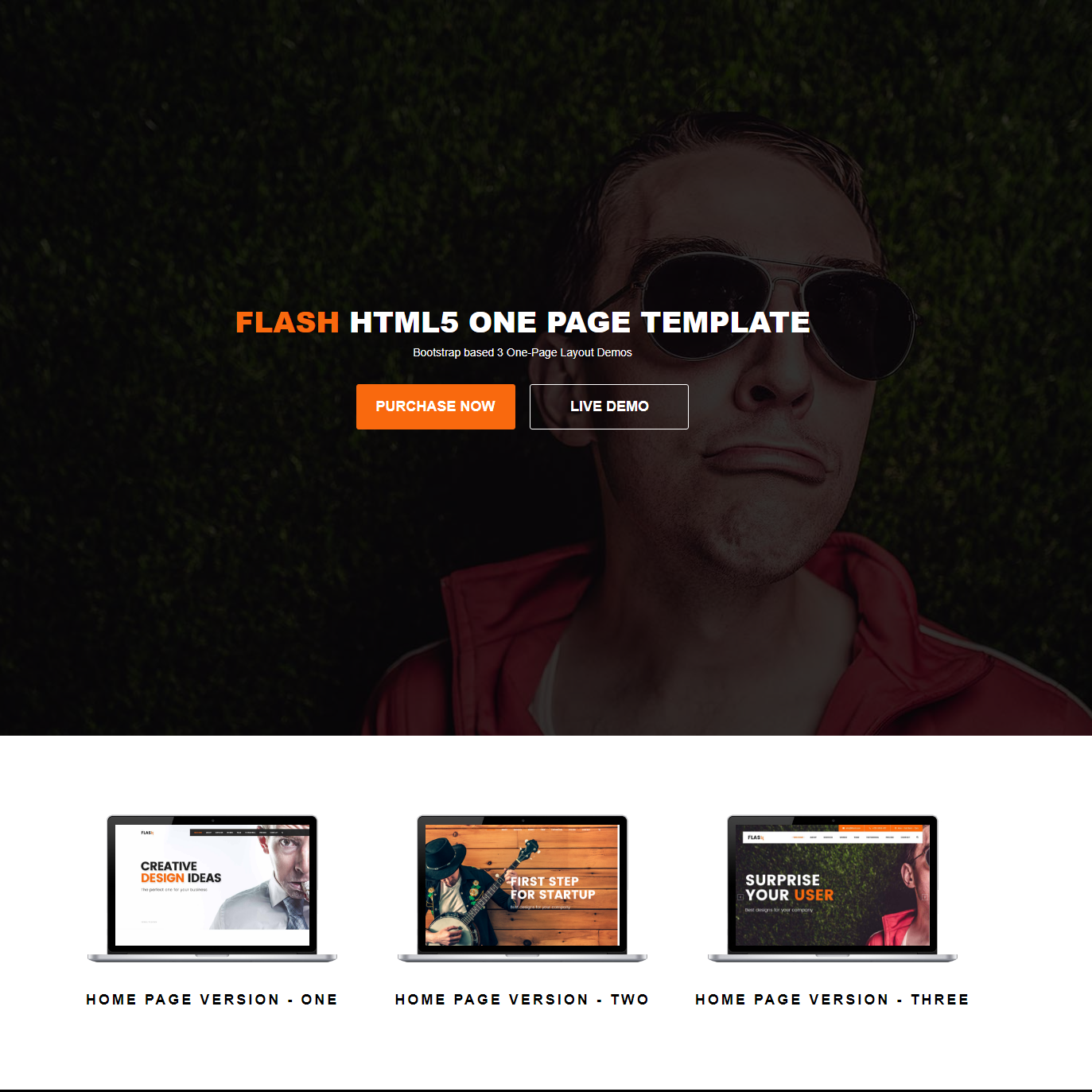 Free Bootstrap Flash Themes