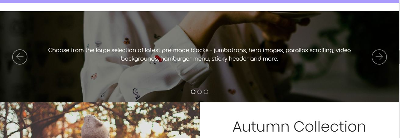 ecommerce bootstrap templates
