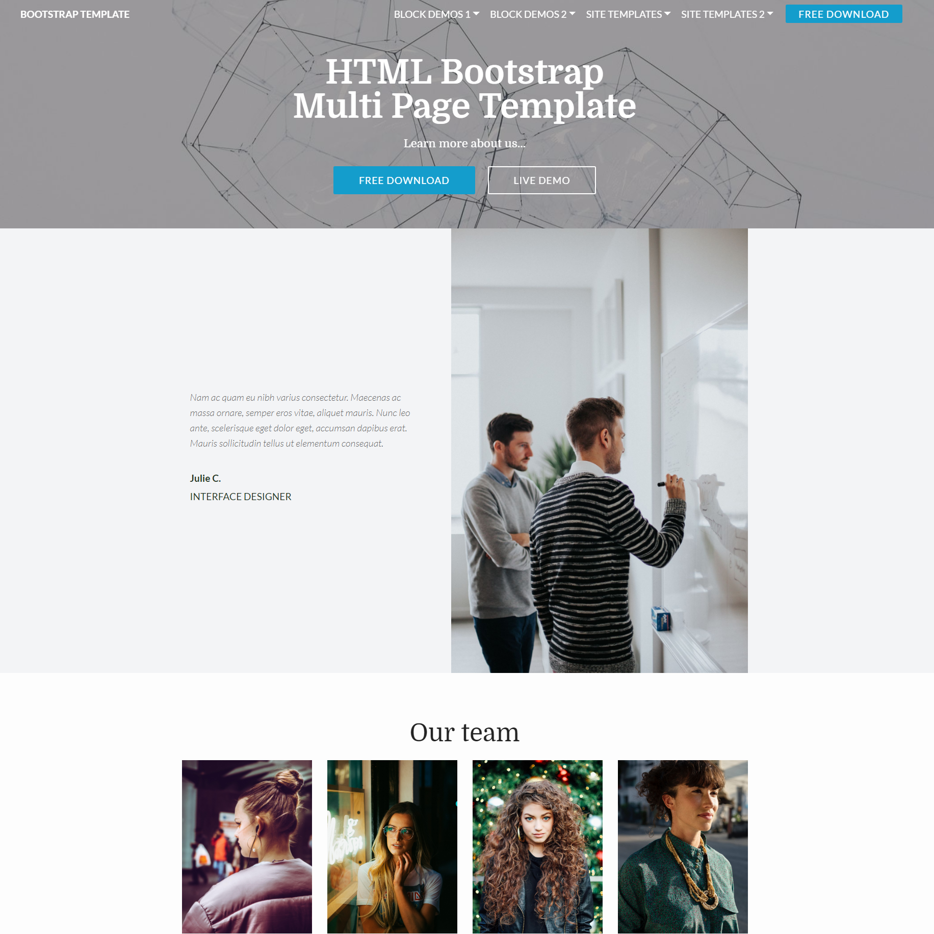 HTML Bootstrap Multi page Themes