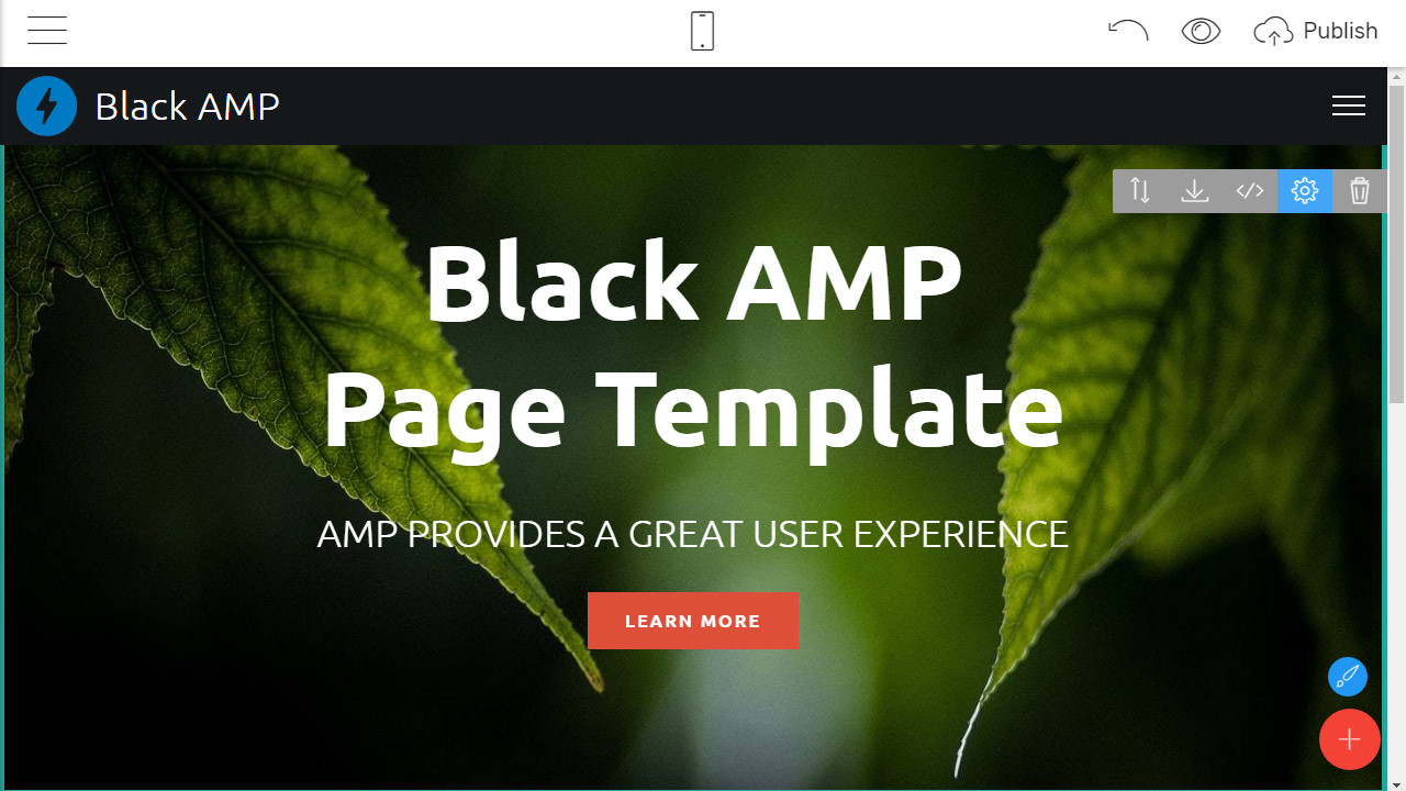 AMP Page Template