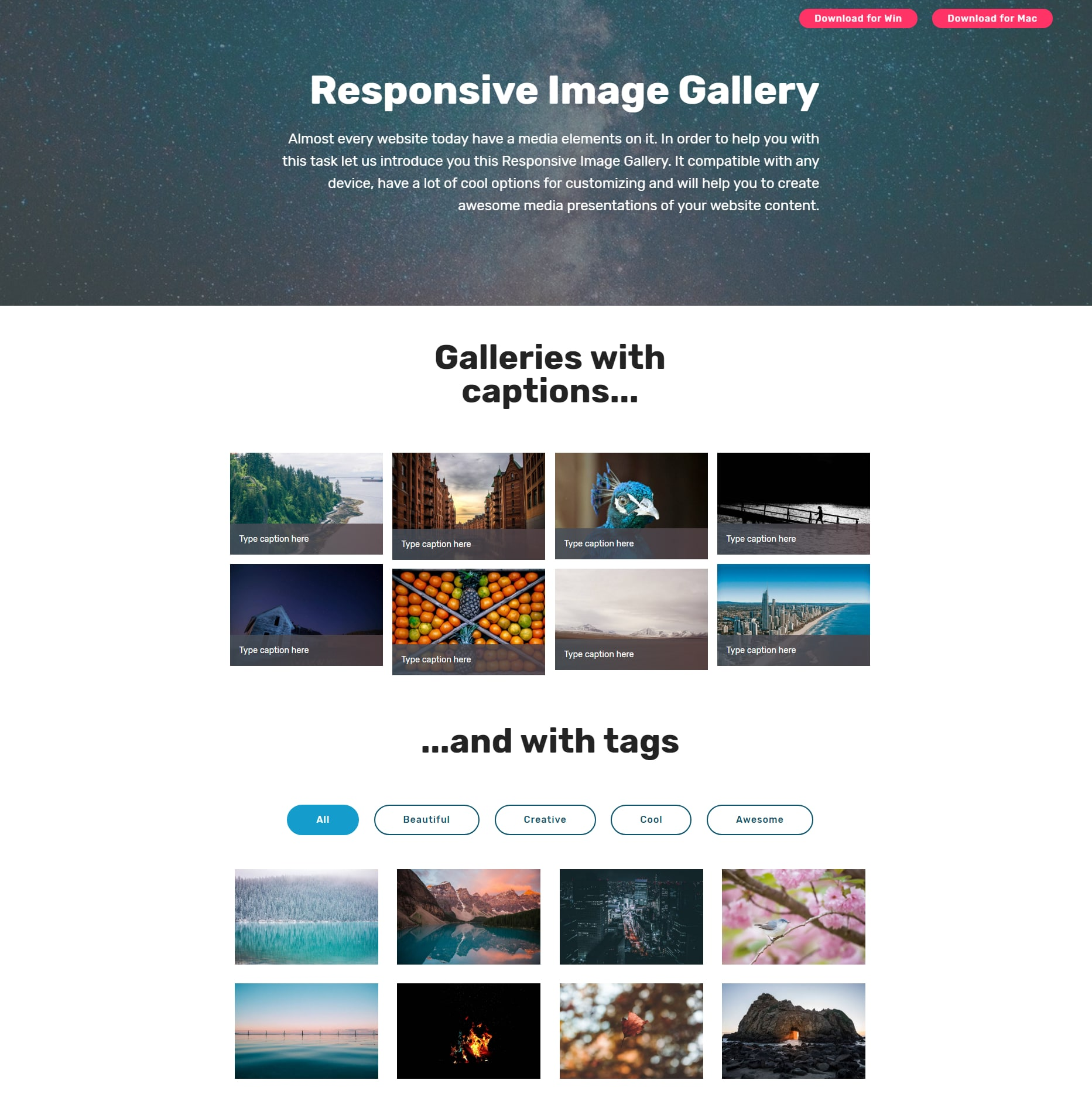 Proffesional Responsive Templates