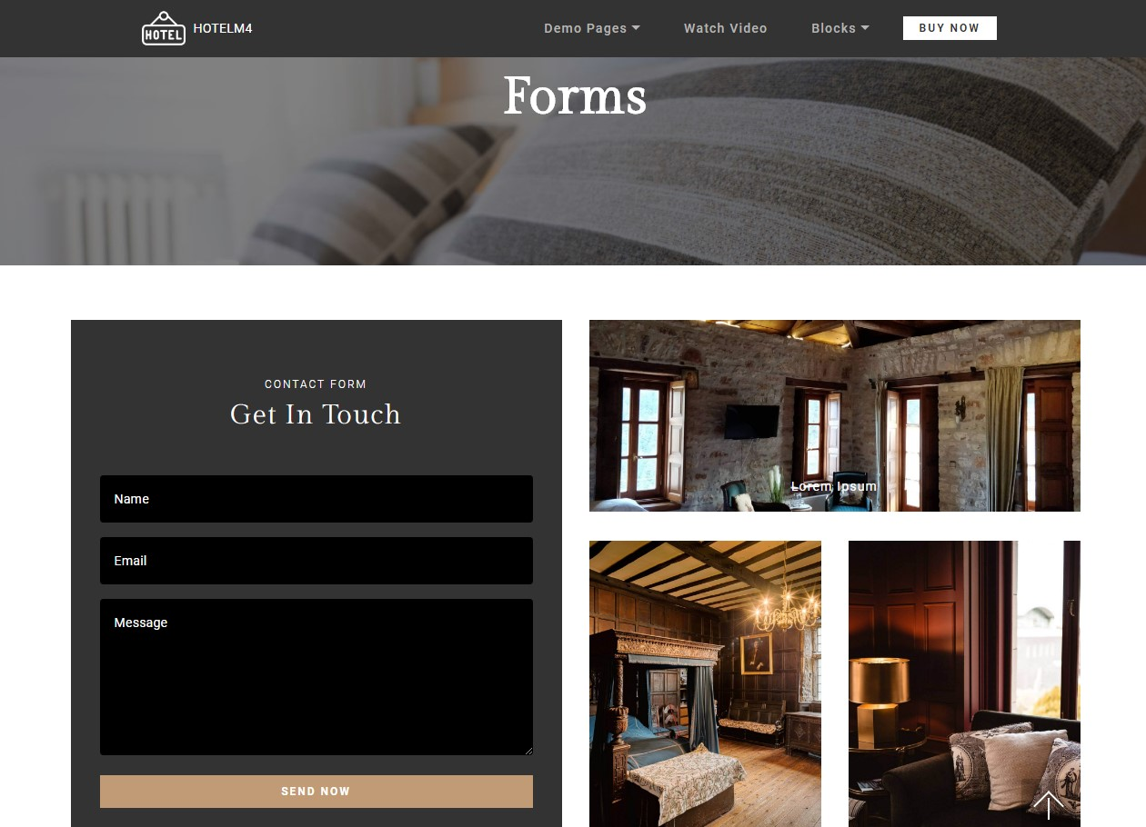 Forms Theme for Hotel Website